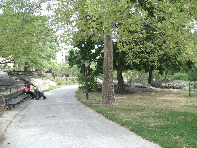 J Hood Wright Park